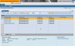 Рабочее место менеджера по кредитам в SAP Portal (обучающее видео)